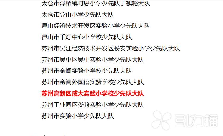 """高新區成大實驗小學校獲評""""江蘇省優秀少先隊集體"""""""